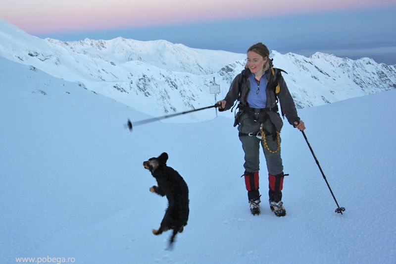 Tina - A cadelinha alpinista (2)