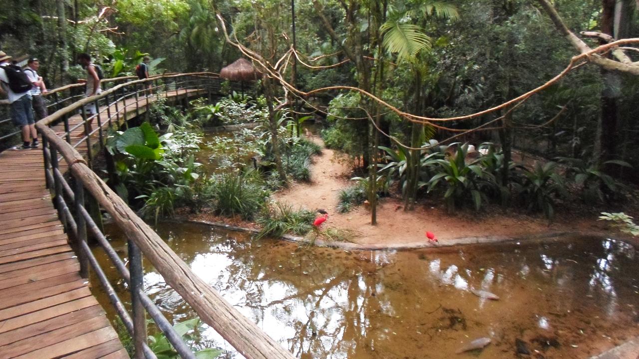 Parque das Aves (7)
